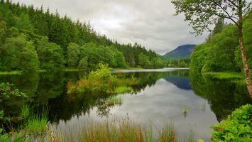 Бесплатные фото Пруд Гленко-Лохан,Шотландия,водоём,лес,деревья,природа,пейзаж