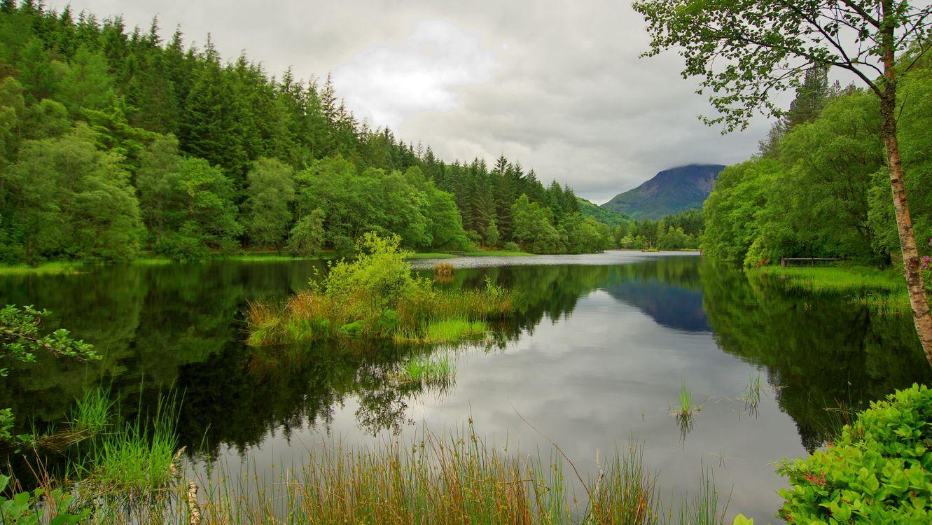 Фото бесплатно Пруд Гленко-Лохан, Шотландия, водоём, лес, деревья, природа, пейзаж, пейзажи