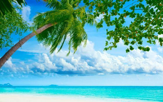 Photo free landscapes, clouds, tropics
