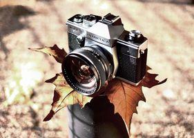 Фото бесплатно фотоаппарат Praktica II, ретро стиль, осенний лист