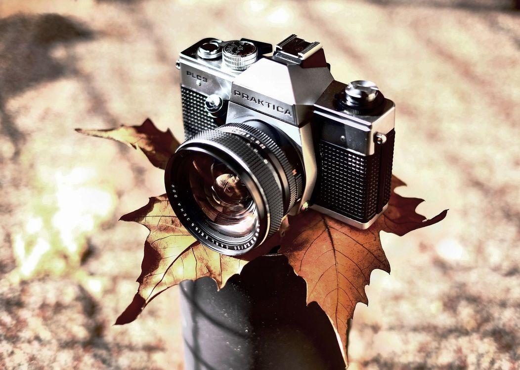 Фото бесплатно фотоаппарат Praktica II, ретро стиль, осенний лист - на рабочий стол