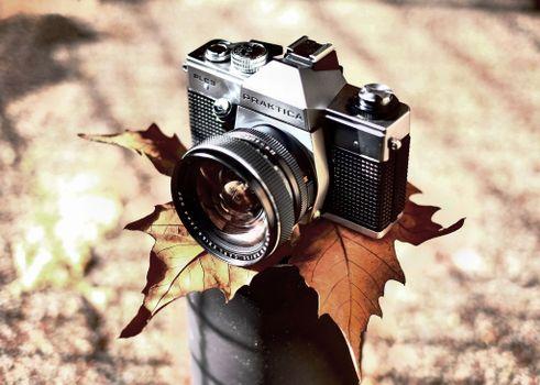 Photo free camera Canon II, retro style, autumn leaf
