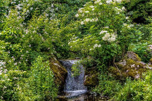 Фото бесплатно Мюнхен зоопарк, водопад, парк