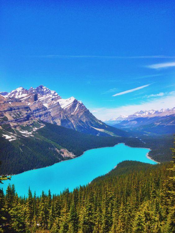 Фото бесплатно Peyto Lake, чистое озеро, прозрачное, синее, елки, лесные горы, Banff National Park, Alberta, Canada, горы, деревья, небо, облака, лес, природа, пейзаж, пейзажи