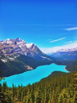 Заставки Peyto Lake,чистое озеро,прозрачное,синее,елки,лесные горы,Banff National Park,Alberta,Canada,горы,деревья,небо