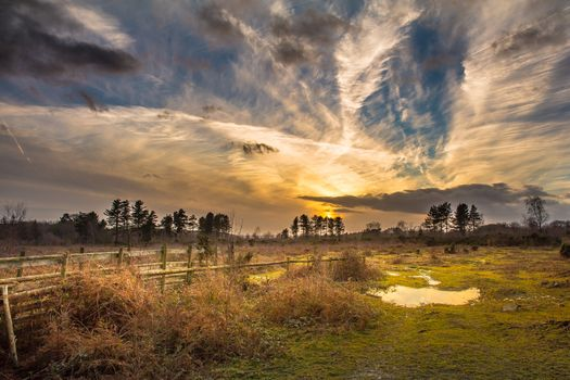 Фото бесплатно поле, закат, лужи