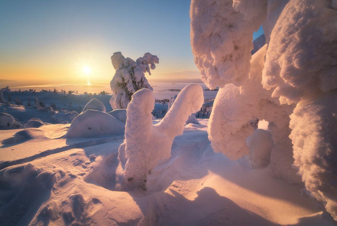 Снежные скульптуры Заполярья · бесплатная заставка