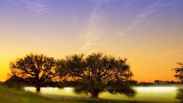 Заставки трава, небо, забор