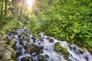 Фото бесплатно Wahkeena Creek by Old Columbia River Gorge, Oregon, водопад