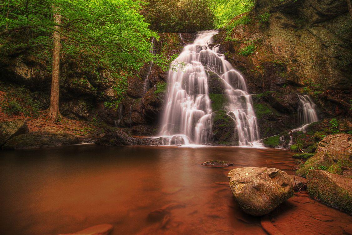 Great Smoky Mountains National Park · бесплатное фото