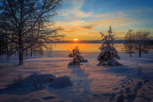 Фото бесплатно закат, зима, озеро, снег, деревья, природа, пейзаж