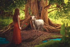 Фото бесплатно сказочный лес, девушка с розой, олень