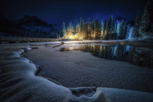Photo free reflection, twilight, trees
