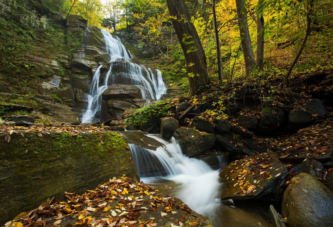 Природа и водопад · бесплатная заставка