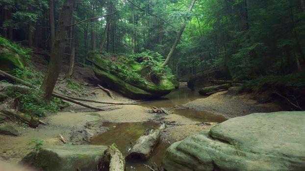 Заставки лес деревья скалы,водоём,природа,пейзаж