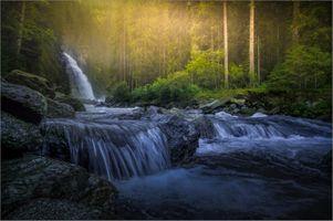 Бесплатные фото лес,водопад,река,скалы,деревья,солнечные лучи,природа