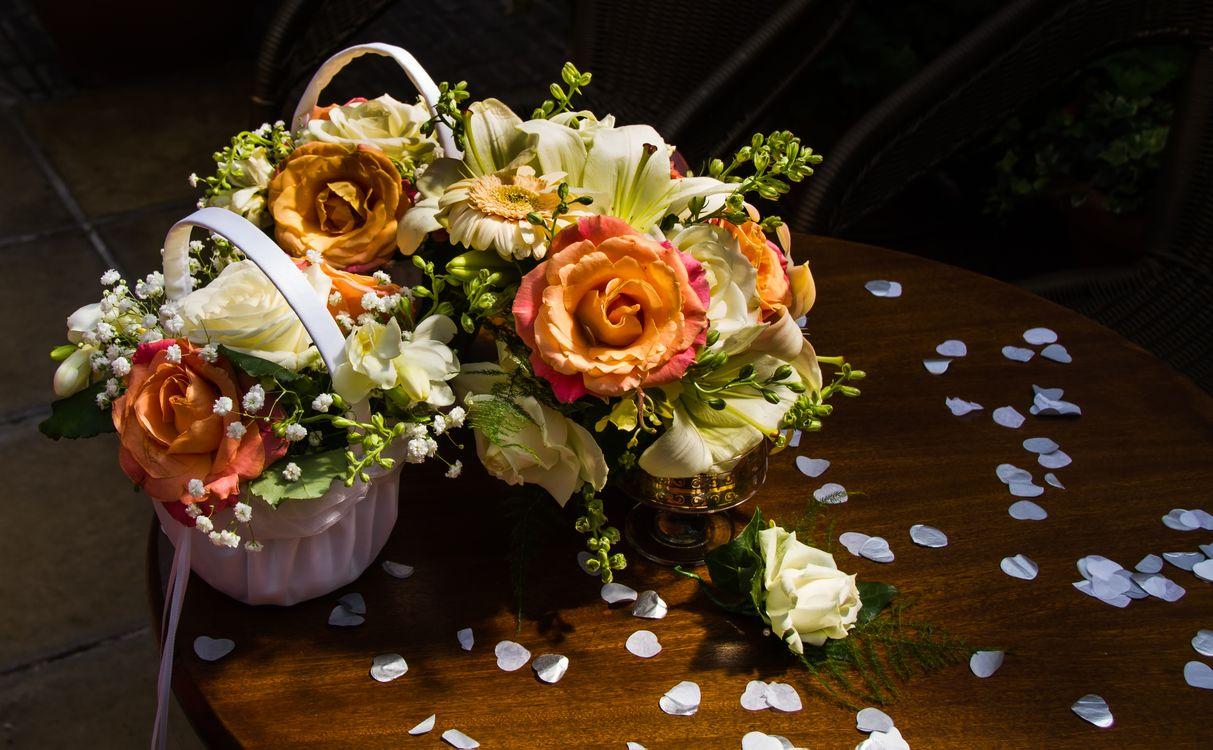 Красивые цветы · бесплатное фото