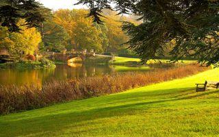 Фото бесплатно осень, мост, озеро, пейзаж, парк, дорога, лавочка, деревья