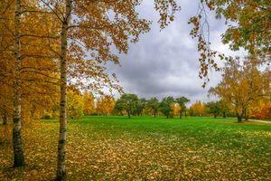 Фото бесплатно осень, октябрь летом, москва