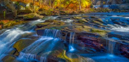 Фото бесплатно дерева, текущие, река
