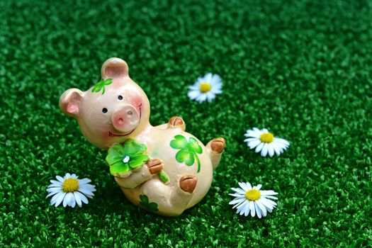Фото бесплатно свинка, трава, цветы