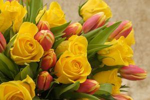 Фото бесплатно букет, красочный, цветочный