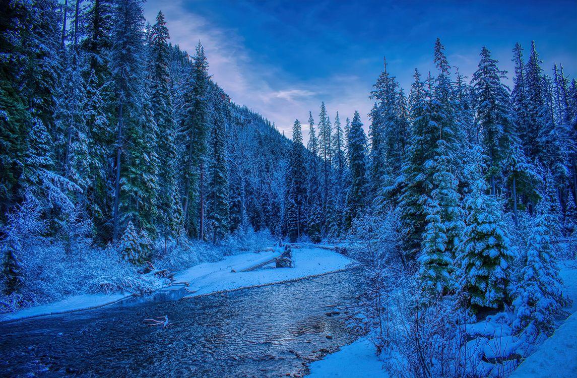 Фото бесплатно небо, рассвет, зима - на рабочий стол