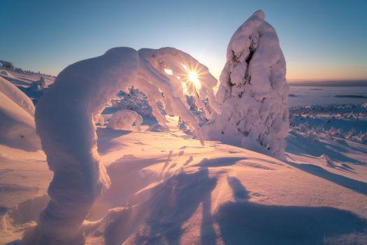 Снежная Годзилла · бесплатное фото