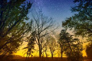Бесплатные фото закат,деревья,млечный путь,сияние,небо,природа,пейзаж