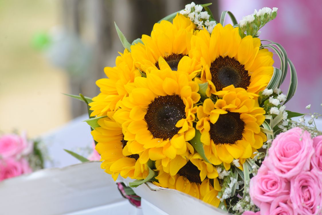 Photos for free a bouquet of flowers, floral design, wedding - to the desktop