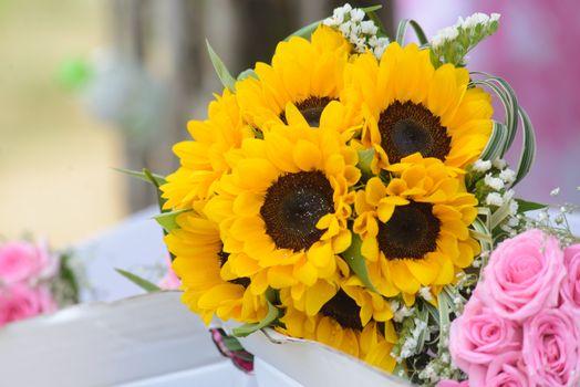 Бесплатные фото свадебные цветы,свадьба,красивый цветок,помолвленный,брак,создание семьи,невеста,счастливый,цветок,роза,красный,синий