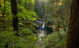 Фото бесплатно пейзаж, природа, пруд