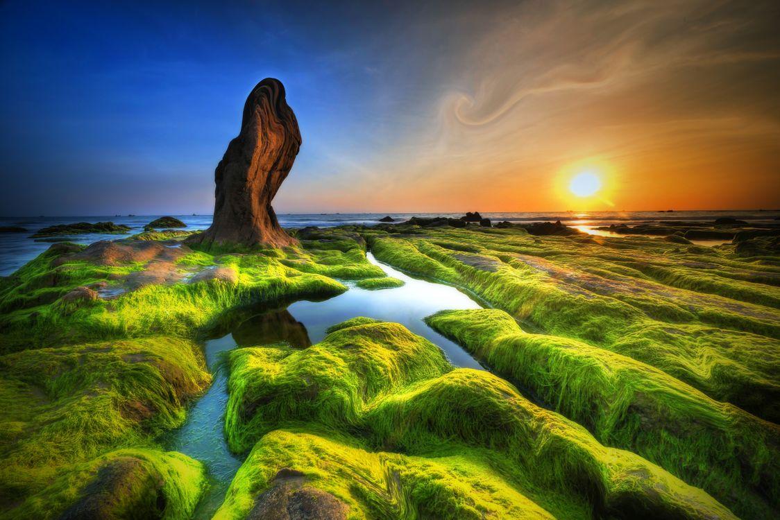 Фото бесплатно закат, море, скалы, скалистый берег, мох, мшистые скалы, природа, пейзаж, пейзажи