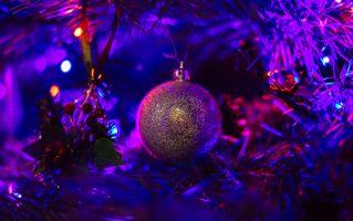 Бесплатные фото Рождество,новогодняя декорация,фон,дизайн,элементы,новогодние обои,новый год