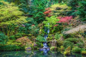 Фото бесплатно Portland, Japanese Garden, Oregon, United States, водопад, лес, парк, Портленд, Японский сад, пейзаж