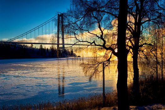 Заставки деревья, Швеция, природа