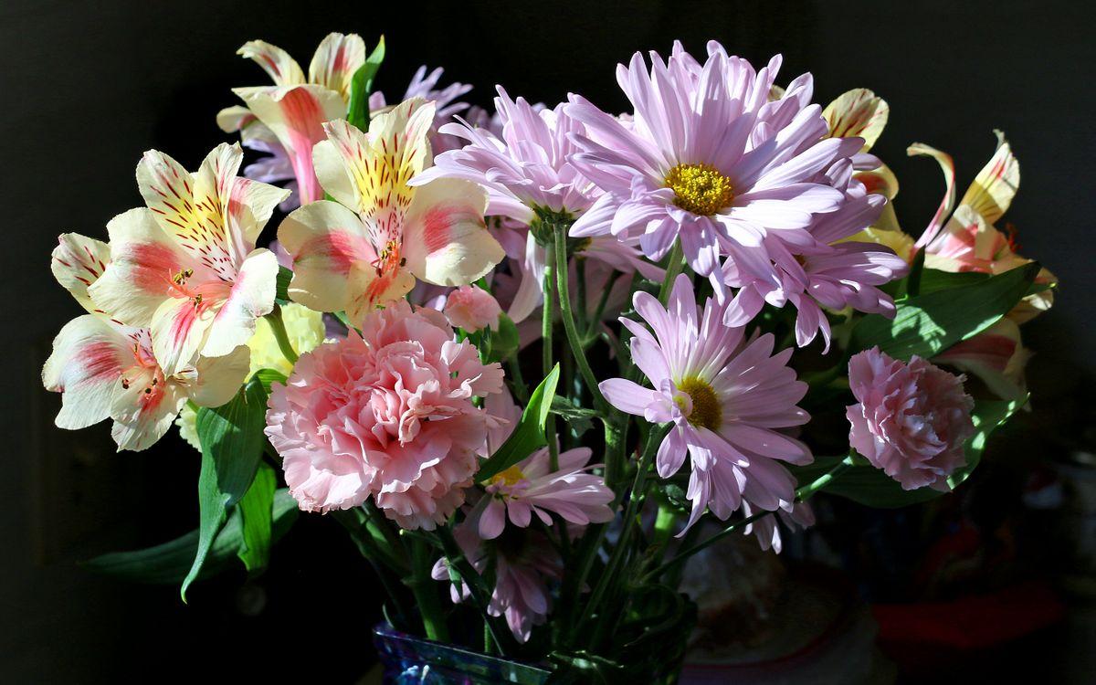 цветочный букет · бесплатная заставка