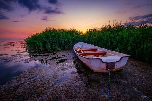 Заставки Sweden, гребная лодка, море