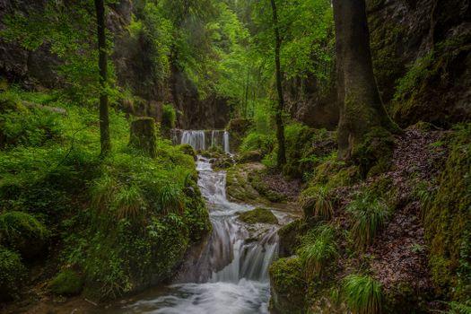 Фото бесплатно лето, ручей, река