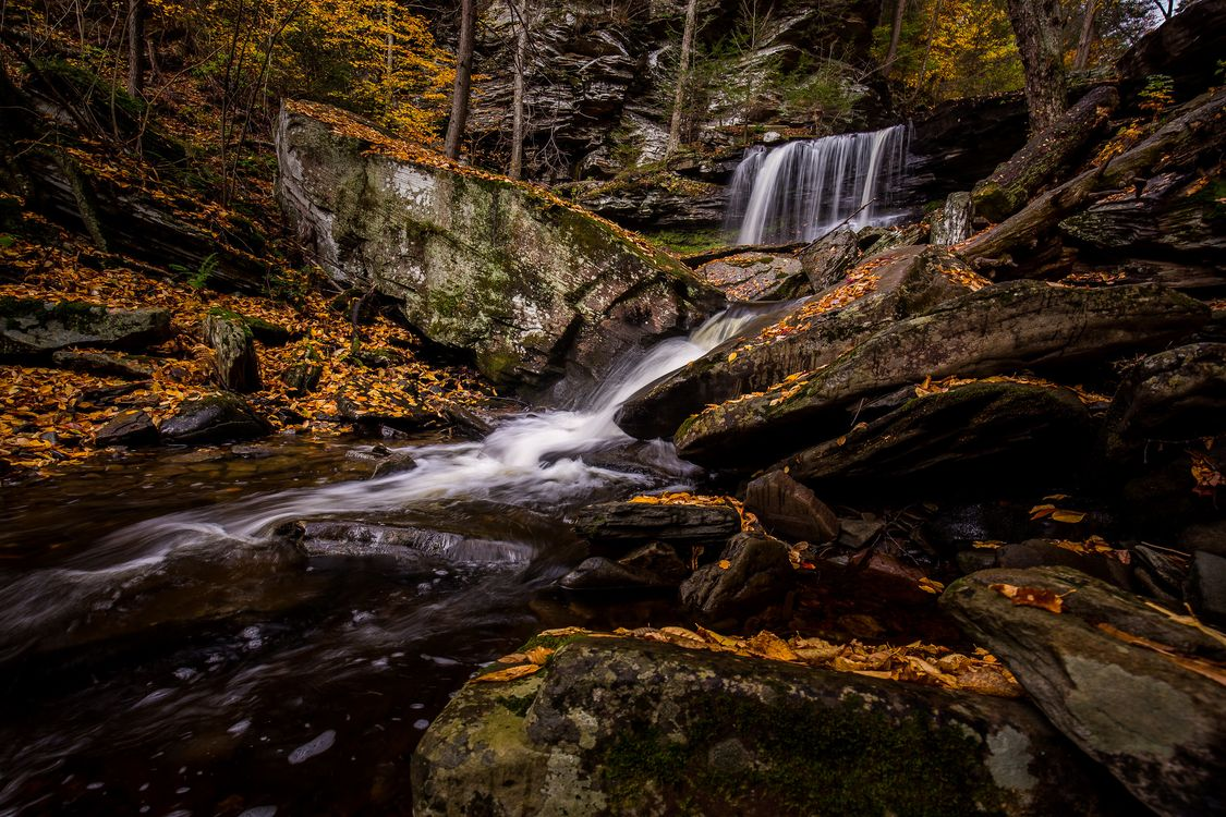 Фото бесплатно водопад, Рикеттс Glen State Park, в Пенсильвании - на рабочий стол