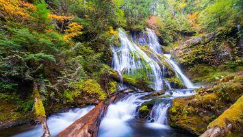 Бесплатные фото Panther Creek Waterfalls,Portland,осень,водопад,деревья,камни,поток