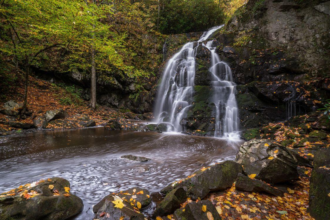 Фото бесплатно Spruce Flat Falls, Great Smoky Mountains National Park, осень - на рабочий стол