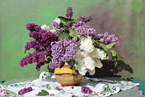 Бесплатные фото стол,ваза,цветы,сирень,натюрморт
