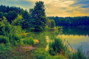 Заставки пейзаж, лето, озеро