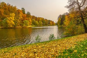 Photo free Tsaritsyno Museum-reserve, autumn leaves, Moscow