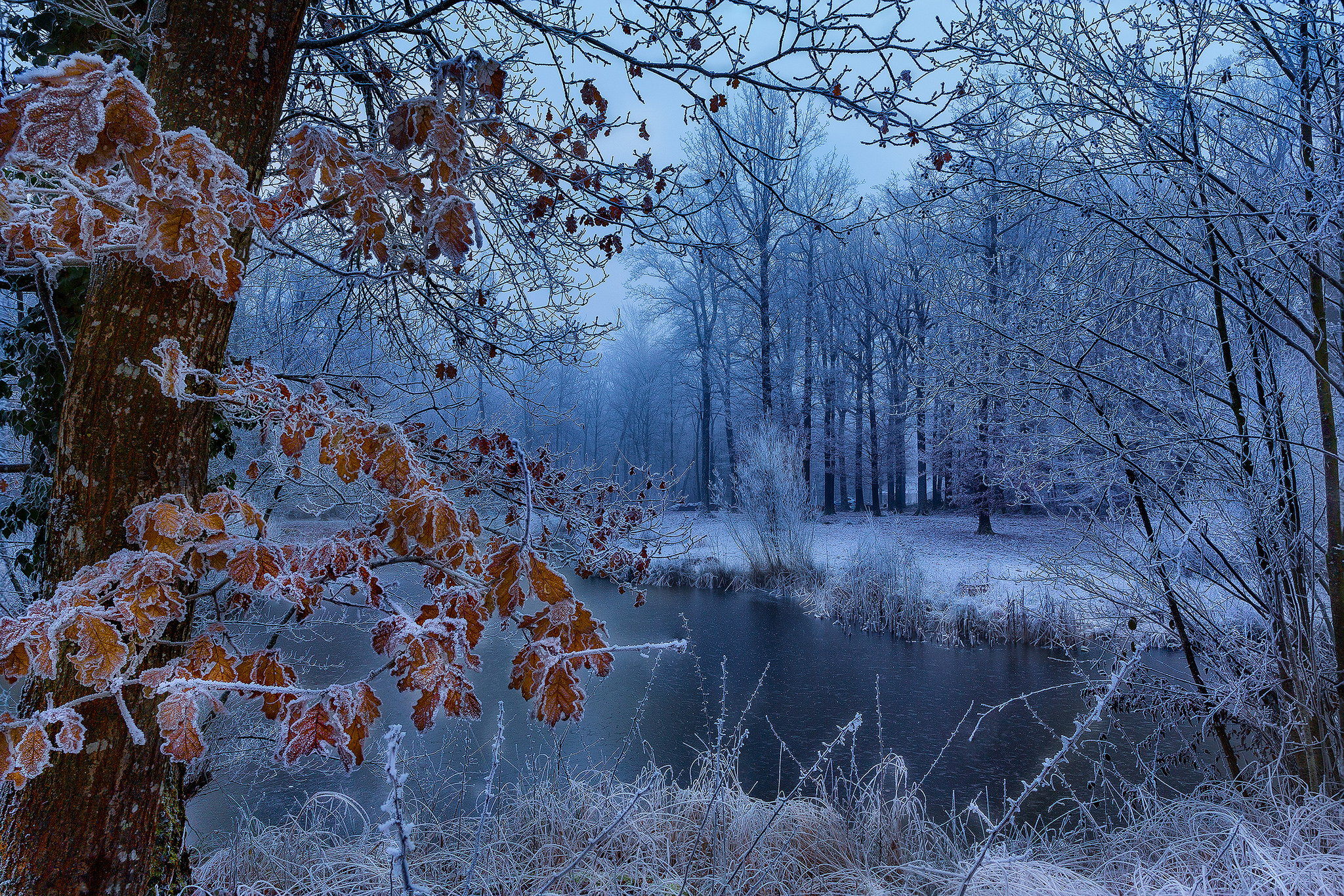 представляет собой картинки про природу осень и зиму богатства, это