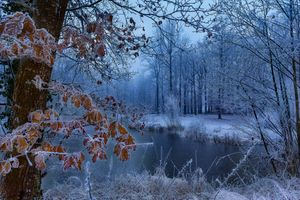 Photo free winter, autumn, pond