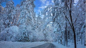 Заставки зима,снег,дорога,деревья лес,сугробы,природа,пейзаж
