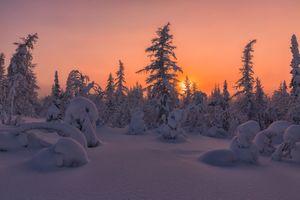 Бесплатные фото Salekhard,Russia,зимняя тундра,лесотундра,закат,зима,снег
