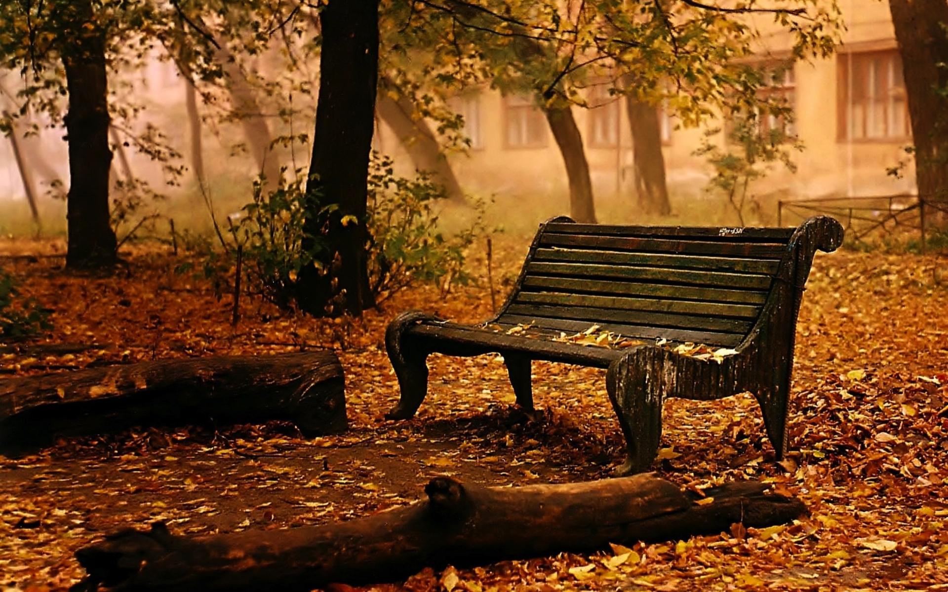 Free Photo Autumn Bench Chair To Desktop